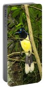 Plush-crested Jay Portable Battery Charger