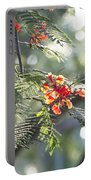 Poinciana Blossoms Close-up V2 Portable Battery Charger