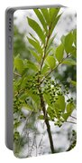 Poison Sumac Portable Battery Charger