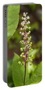Poke Sallet Blossom Spire - Phytolacca Acinosa  Portable Battery Charger