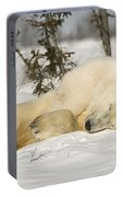 Polar Bear With Cub In Snow Portable Battery Charger