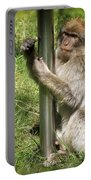 Pole Dancing Macaque Style Portable Battery Charger