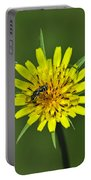 Pollination Portable Battery Charger