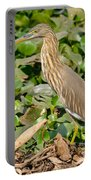 Pond Heron Portable Battery Charger