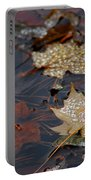Pond Leaf Dew Drops Portable Battery Charger by LeeAnn McLaneGoetz McLaneGoetzStudioLLCcom