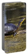 Pond Turtle Basking In The Sun Portable Battery Charger