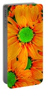 Pop Art Daisies 13 Portable Battery Charger