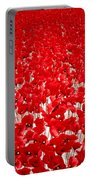 Poppy Meadow ... Portable Battery Charger