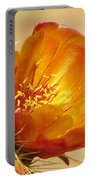 Portrait Of A Cactus Flower Portable Battery Charger