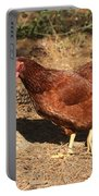 Portrait Of A Chicken Portable Battery Charger