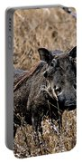 Portrait Of A Warthog Portable Battery Charger