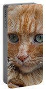 Portrait Of An Orange Kitty Portable Battery Charger