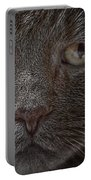 Portrait Of Cutio The Cat Portable Battery Charger