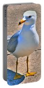 Posing Gull Portable Battery Charger