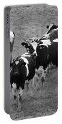 Pourquoi Pas Les Vache Portable Battery Charger