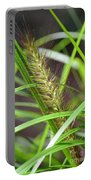 Prairie Dropseed Portable Battery Charger