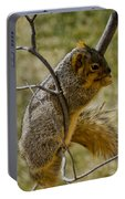 Praying Squirrel Portable Battery Charger