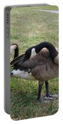Preen Portable Battery Charger