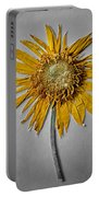 Pressed Sunshine Flower Portable Battery Charger
