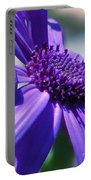 Pretty In Pericallis Portable Battery Charger by Rory Sagner