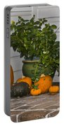Pretty Pumpkins Portable Battery Charger