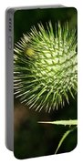 Prickly Globe Portable Battery Charger
