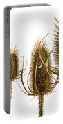Prickly Teasels On White Portable Battery Charger