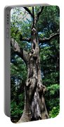 Princess Tree Portable Battery Charger