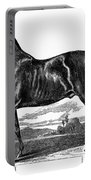 Prize Horse, 1857 Portable Battery Charger