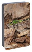 Profile Of Green Dragonfly Portable Battery Charger