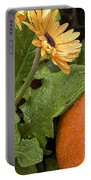 Pumpkin And Gerberas Portable Battery Charger