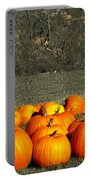 Pumpkin Farm Portable Battery Charger