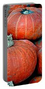 Pumpkin Patch Portable Battery Charger