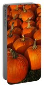 Pumpkin Pie Anyone Portable Battery Charger