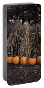 Pumpkins And Cornstalks Portable Battery Charger