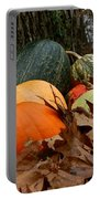 Pumpkins And More Pumpkins Portable Battery Charger