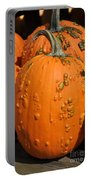Pumpkinville Portable Battery Charger