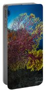 Purple And Yellow Sea Fan In Raja Portable Battery Charger