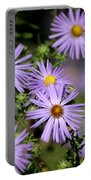 Purple Asters Portable Battery Charger