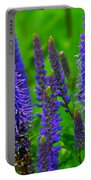 Purple Blue Yellow Green Portable Battery Charger