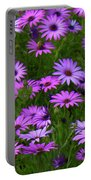 Purple Daisies Square Portable Battery Charger