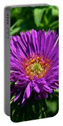 Purple Dome New England Aster Portable Battery Charger