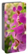 Purple Field Portable Battery Charger