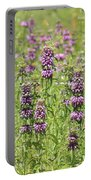 Purple Flower Field Portable Battery Charger