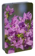 Purple Of The Bougainvillea Blossoms Portable Battery Charger