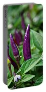 Purple Pepper Life Cycle  Portable Battery Charger