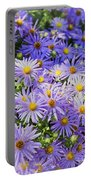 Purple Reigns Portable Battery Charger
