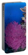 Purple Sea Fan In Raja Ampat, Indonesia Portable Battery Charger