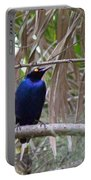 Purple Starling Portable Battery Charger