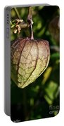 Purple Tomatillo Portable Battery Charger